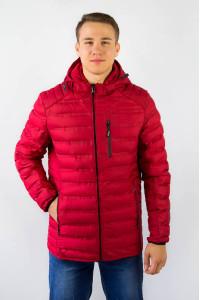 Куртка демисезонная мужская 503-091